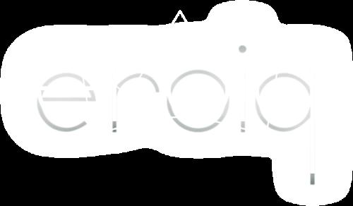Logo Eroiq
